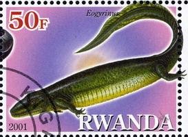 http://biostamps.narod.ru/worldlist/rwanda/rwanda_2001_pre/rwanda_2001_pre_ms2_XX10_H200.jpg